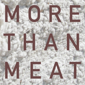 morethanmeat_logo_revise_8
